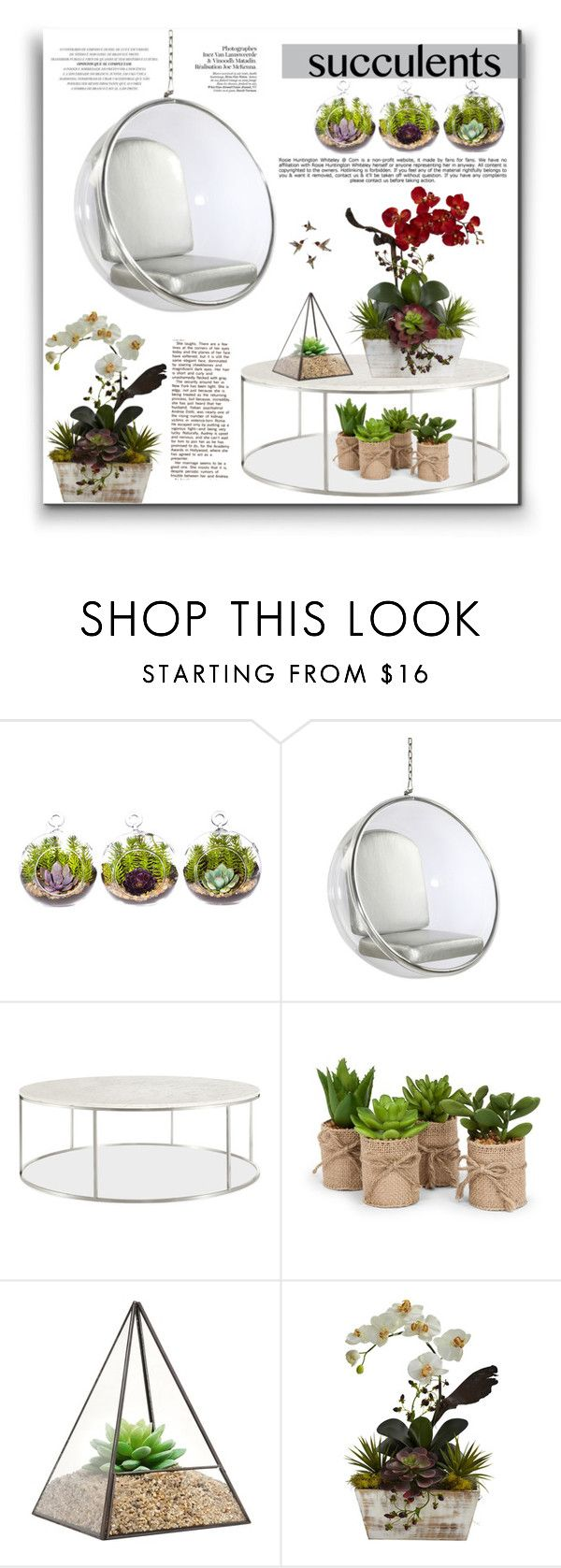 """""""Cacti + Succulents"""" by alinnas on Polyvore featuring interior, interiors, interior design, home, home decor, interior decorating, Dot & Bo, Nearly Natural, Whiteley and succulents"""