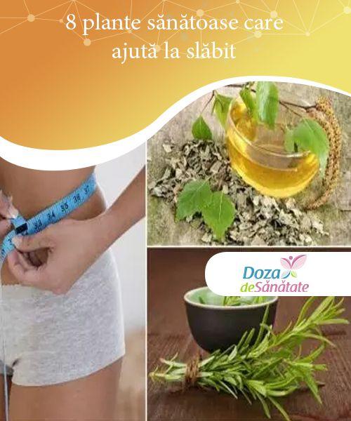 8 plante sănătoase care ajută la slăbit   Chiar dacă pare greu de crezut, există plante sănătoase care ajută la slăbit prin accelerarea metabolismului și stimularea arderii grăsimilor.