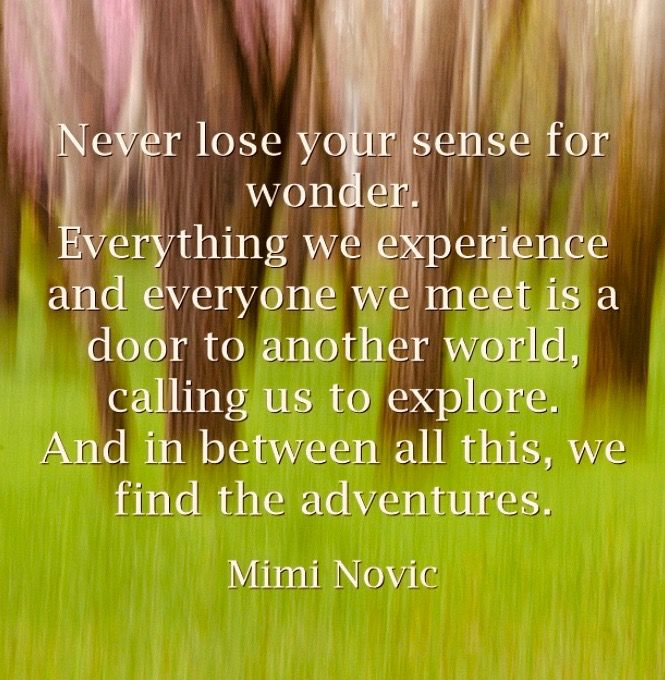 Inspirational quotes by Mimi Novic live life adventure wonder new beginnings chance luck fate opportunities luck fate destiny self love heart dreams poetry compassion healing motivation mind body spirit soul love sadness joy inspiration spiritual