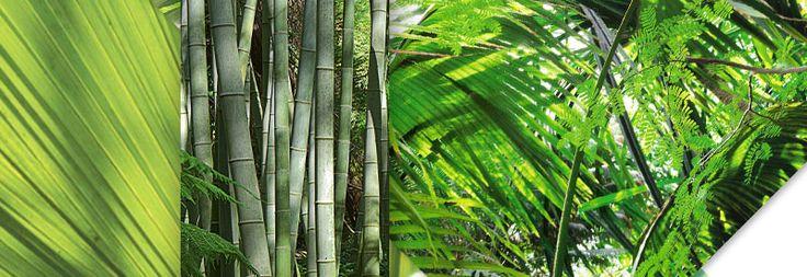 Vert palme