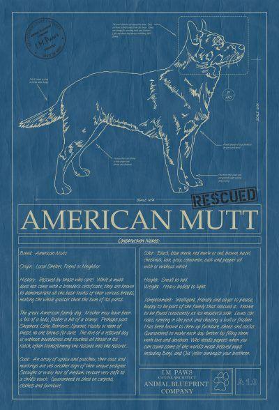 American mutt 9 morning room pinterest large prints american mutt 9 animal blueprint company malvernweather Gallery