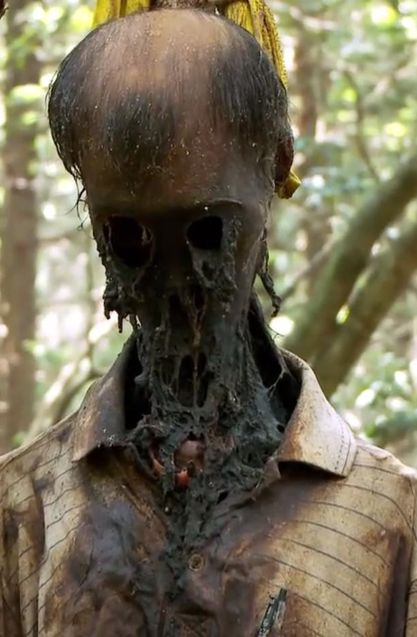Best Suicide Forest Japan Images On Pinterest Forests - 27 places stuff nightmares made
