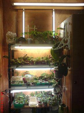 Светодиодная подсветка для растений. Лампы, ленты.