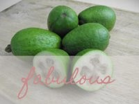 Lots of Feijoa/Pineapple Guava recipes