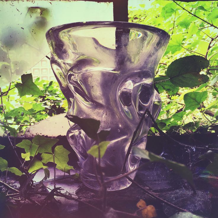 Abandoned belgian glas factory, part 30 --- fractured vase hugged by nature