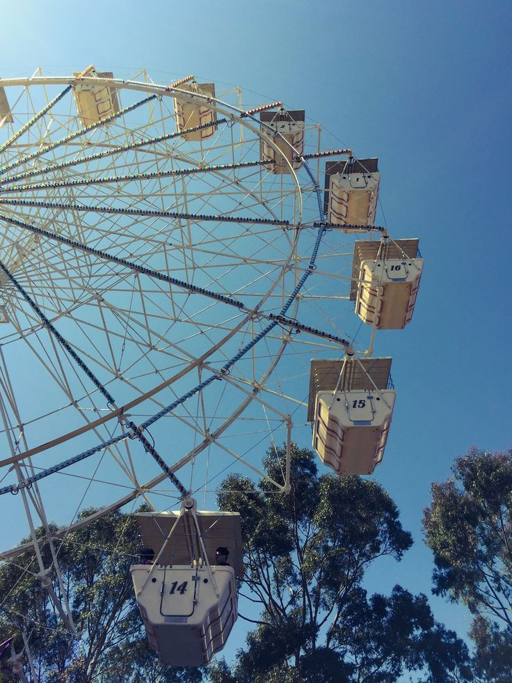 I had a Right Royal time at the #IGA #PerthRoyalShow this year! Every Springtime, the country comes to the city for eight whole days, bringing with it the cream of the crop from the world of #agriculture. And of course there's a #funfair! Check out the blog... katierebekah.com.au #KatieRebekah #Perth #royalshow #show #Australia #WesternAustralia #country #farming #bigwheel #ferriswheel