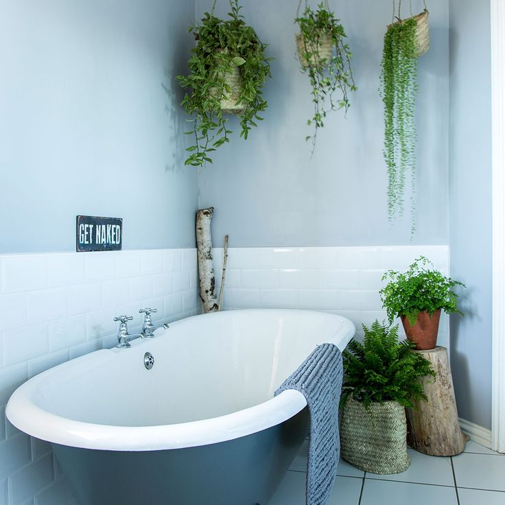 Best 25 jungle bathroom ideas only on pinterest for Jungle bathroom ideas