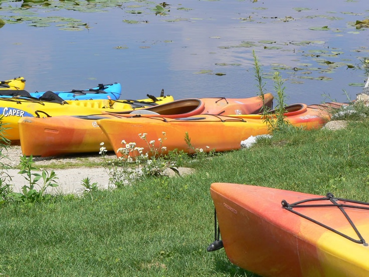 Kayaks at Wades bayou, waiting to be rented. Sherwood