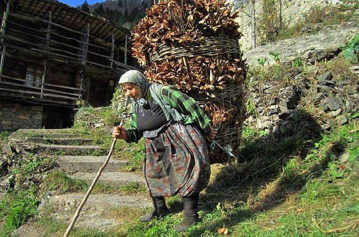 Karadeniz de insan ve yaşam  çalışkan cefakar vefakar Karadeniz kadını