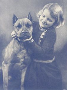Vintage photo of little girl with pit bull from http://twolittlecavaliers.com/2012/01/vintage-pit-bull-photos.html