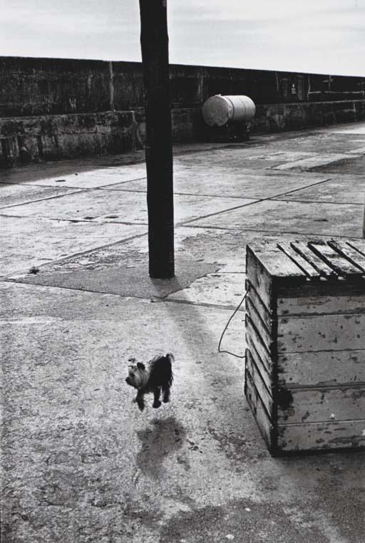 Ballycotton, Ireland, 1968, Ellott Erwitt. American, born in 1928.
