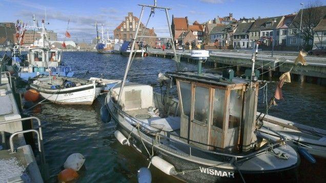 Unglück im Stadthafen Wismar: Liebe zum Hund bringt Frauchens Leben in Gefahr | svz.de