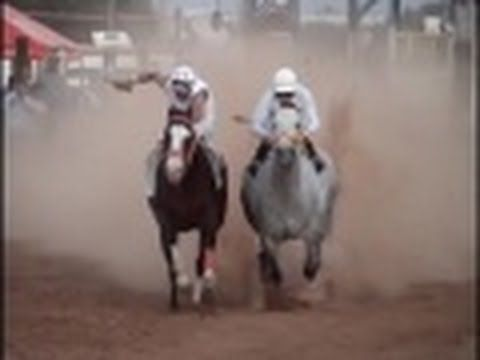 SAMURAI    HORSE   RACING    HORSE   RUNNING