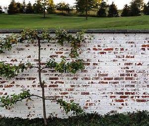 Image result for Smeared Mortar Over Brick