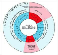 En caso de que la fecundación del óvulo no se haya producido, dicho óvulo acaba involucionando y es expulsado en la próxima menstruación. Tras la postovulación empieza un nuevo ciclo menstrual.