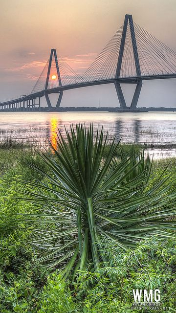 Cooper River Bridge Sunset by Dustin K. Ryan, via Flickr, connects downtown Charlestown to Mt. Pleasant, SC