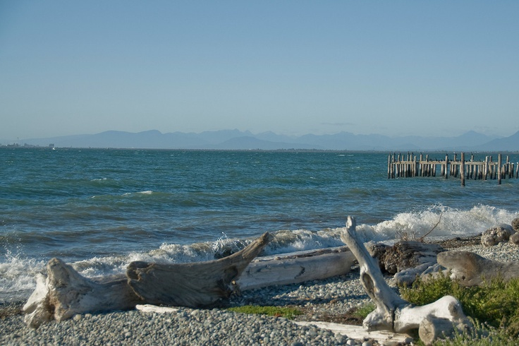 Driftwood on the Shore of Point Roberts, Washington.  See more at Everything-Everywhere.com