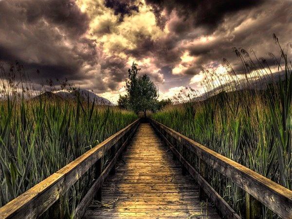 .: Favorite Places, Sunset, Beautiful Places, Landscape Photography, Beautiful Paths, Roads Paths Bridges, Picture Perfect Places, Beautiful Pictures