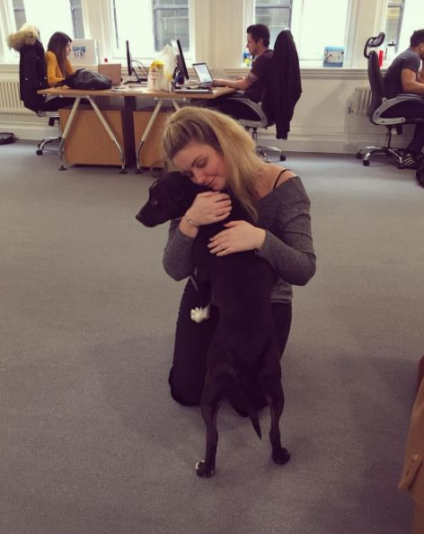 Office cuddles for Jake and Hazel