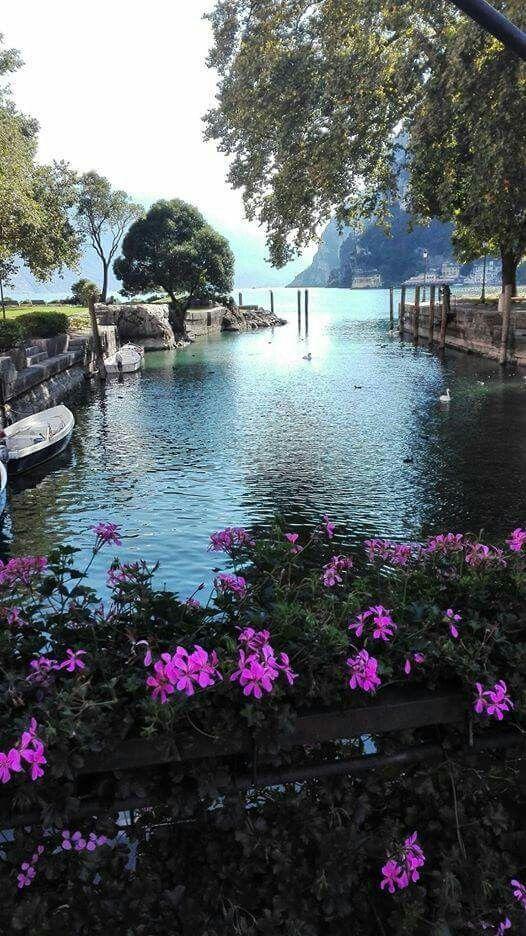 Non potete non venire a visitare almeno una volta nella vita la cittadina di Riva del Garda, un magnifico posto situato sulle rive dell'omonimo lago. La partenza è prevista per il 12.05.2016 con rientro 16.05.2016