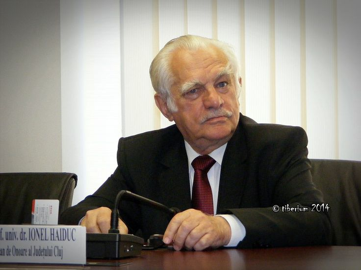 Tiberiu Matei .: Academician Ionel Haiduc