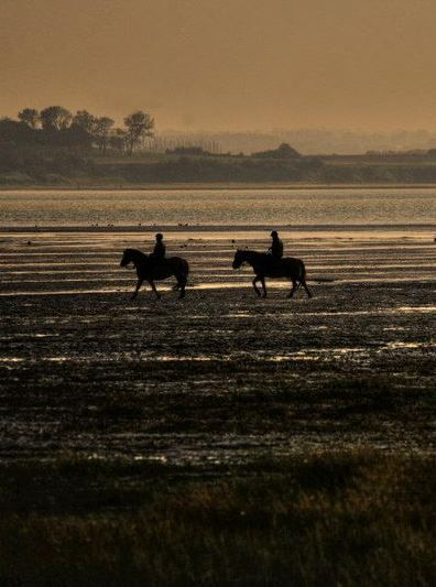 Somme Bay, Picardy, France