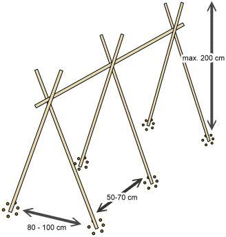 Stangenbohnen Rankhilfe: Die hab ich mir aus Bambusstangen ganz schnell und einfach aufgebaut. Jetzt nur noch die Eisheiligen abwarten, und dann können die Bohnen in die Erde.