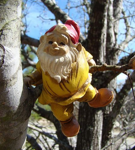 Gnombies Garden: 282 Best Ideas About You GNOME Me! On Pinterest