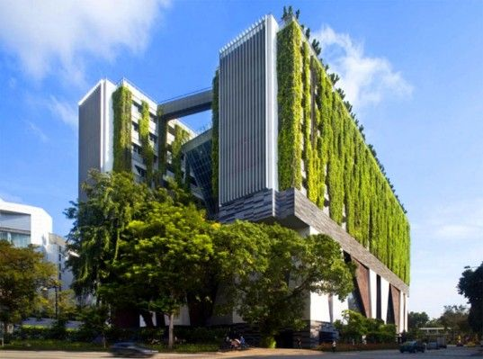 Wyższa Szkoła Sztuk Pięknych w Singapusze potrafi zadbać o piękny wygląd | School of the Arts in Singapore has a living roof and facade that keep the interiors cool and the city air clean #greencity #urbangarden #verticalgarden #greenwall #singapore #nature #plants #inspiration