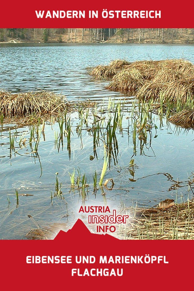 Der Eibensee ist ein kleiner, idyllisch gelegener See zwischen Fuschl und St. Gilgen, eingebettet zwischen kleinen Bergen.