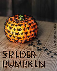 Spider pumpkin.. plastic dollars store pumpkin plus plastic spiders.  SO CREEPY and awesome