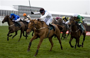The 2012 Grand National runners have been confirmed, with 40 horses set to take their place in the world's most famous National Hunt race