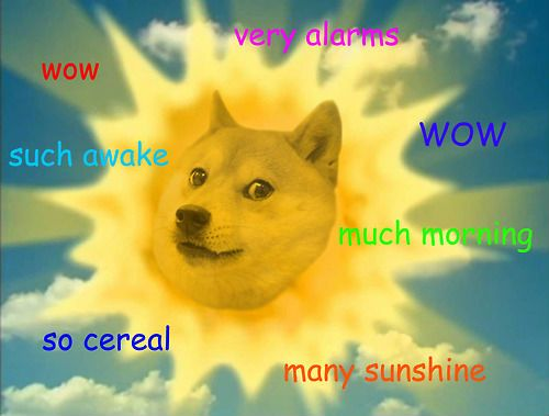Such Doge Meme | 15 Pics Best of the Doge meme: wow such funny so doge