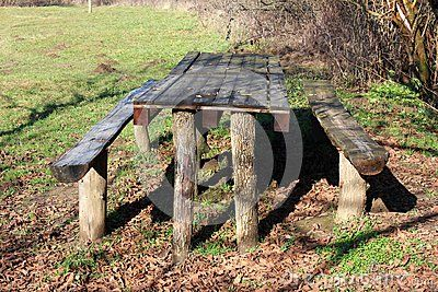 Wooden outdoor table made from tree stumps and pallets with two benches in shade of tall tree and surrounded with green grass and fallen autumn leaves