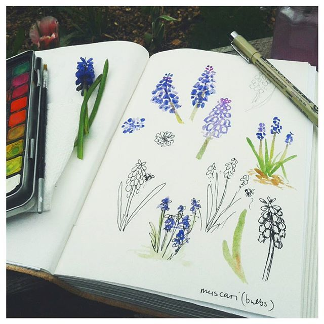 daily outdoor sketch challenge for the summer months....press flowers and foliage along the way to add into sketchbook when they're ready.