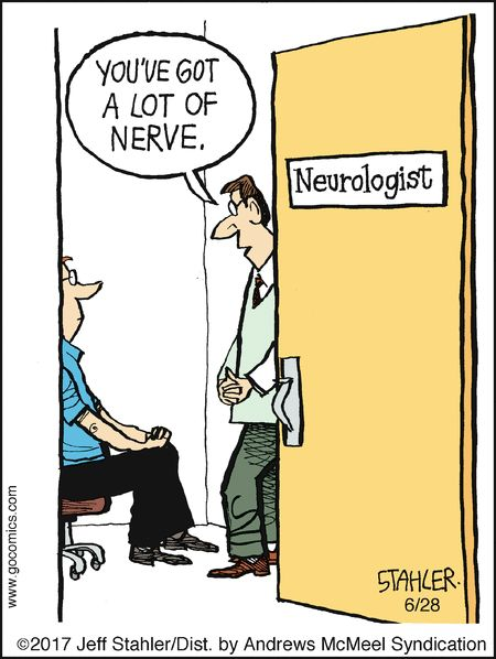 Moderately Confused by Jeff Stahler for Jun 28, 2017