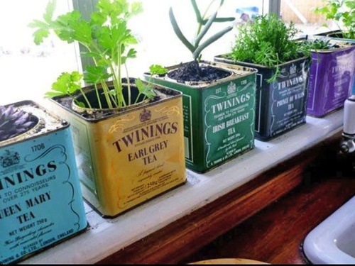 Tea Can Pots  Nice way to reuse your own tea boxes-diy plant pot for flowers, herbs etc..  -diyhoard