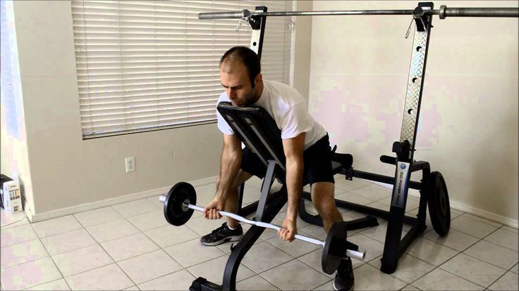 Incline Bench Bicep Curl.  Visit www.stack52.com/barbell for over 50 free barbell exercises!