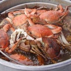 Get the tastiest crab with this Boiled Crabs recipe from LouisianaSeafood.com  #louisiana #crabrecipe