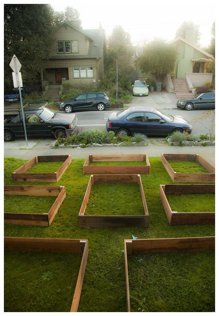 Lawn-garden1 He Started With Some Boxes, 60 Days Later, The Neighbors Could Not Believe What He Built