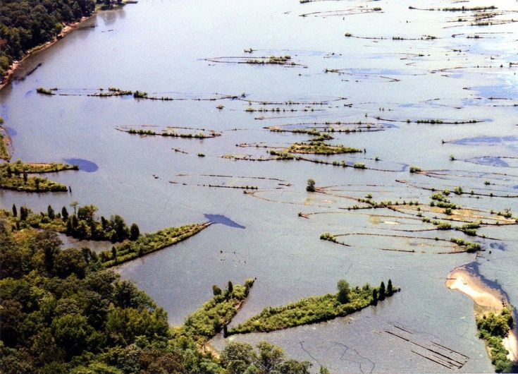 """An incredible site in the Potomac River, which is home to the """"Ghost Fleet of Mallows Bay"""", has been nominated as a national marine sanctuary."""