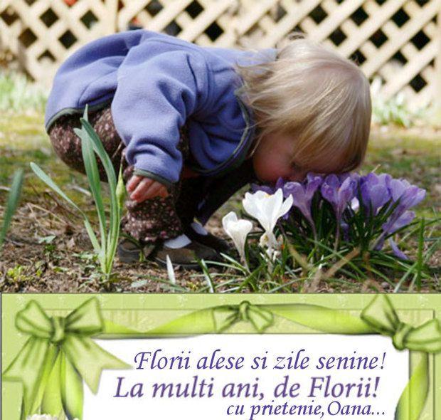 La Multi Ani De Florii Tuturor Purtatoarelor Si Pu 0d58d0a8870d62 Jpg