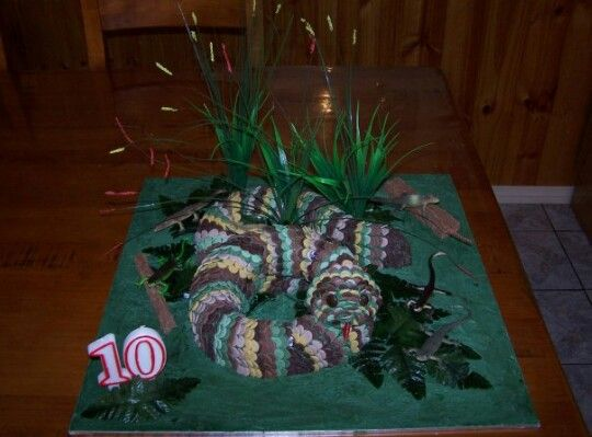 This cake I made 6.5 years ago for my son Jayden for his 10th birthday party.. He loved it.. October 2008.. Cake made by Sammi