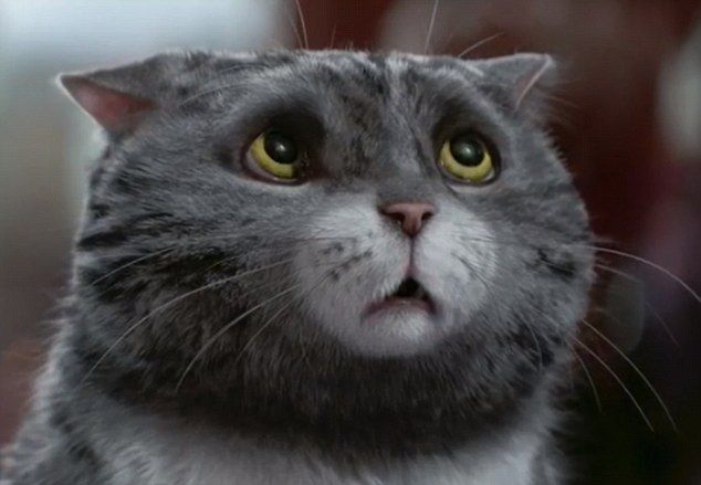 Sainsbury's Christmas advert has been unveiled and features Mog, the calamity-prone cat in a brand-new Christmas tale written by the author of the original series Judith Kerr, who even makes a cameo appearance