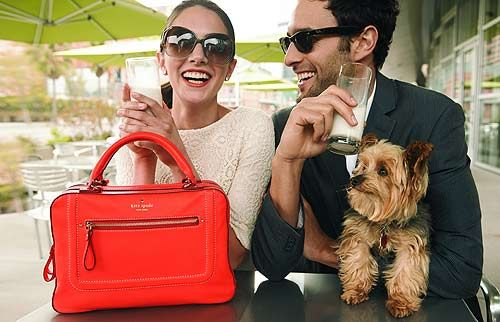 lace dress, oversized shades, and kate spade bag: Lace Tops, Puppies, Fashion, Dogs Pur, Dogs Lovers, Kate Spade, Bags, Katespade, Lace Dresses