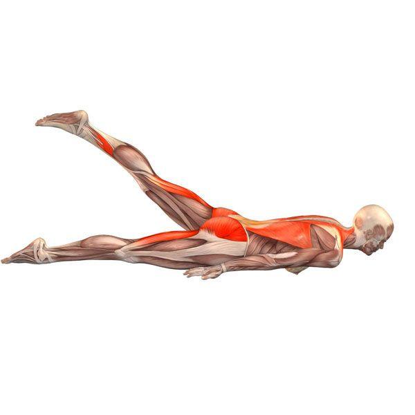 ૐ YOGA ૐ Ekopada Salambhasana ૐ Postura de langosta con pierna izquierda.  Locust pose with left leg up - Yoga Poses | YOGA.com