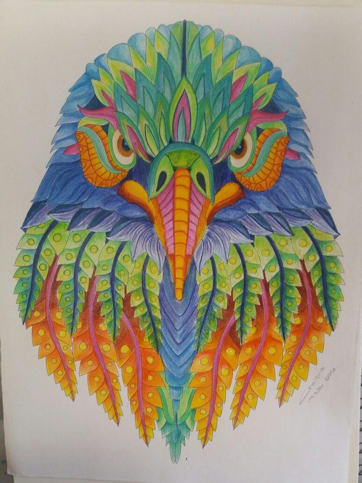 colourful eagle