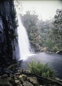 Beautiful Halls Gap Victoria In The Grampians. Check into one of the Halls Gap accommodation to stay few days and to explore. http://www.ozehols.com.au/blog/victoria/beautiful-halls-gap-victoria-in-the-grampians/ #outdoor #outdoortravel #travelideas #traveldestinations