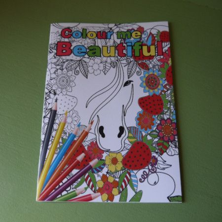 Colouring Book - Horse themed - adult detailed - Pony Express Girls Canada - 1