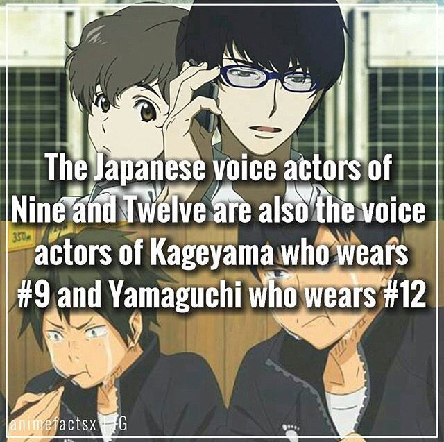 Anime facts Zankyou no terror and Haikyuu!                                                                                                                                                                                 More
